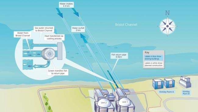 Hinkley C AFD diagram