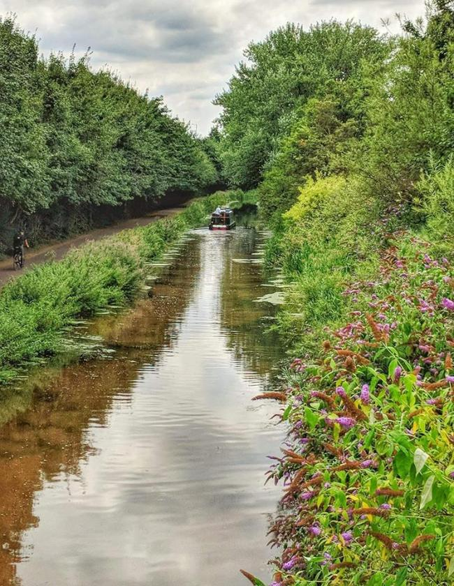 WATER ROAD: On the Bridgwater Taunton Canal, by Roger Shattock - Somerset Camera Club