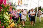 WOW FACTOR: Visitors take in the floral displays at the 2019 Taunton Flower Show