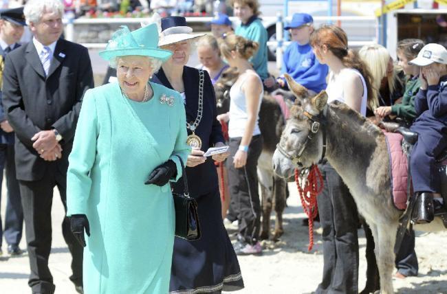 Weymouth beach donkey Jasmine will be remembered - Somerset County Gazette