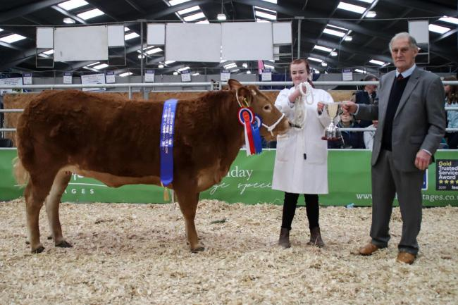 Ricky Cobbledick's Limousin-cross heifer took Best Beast In Show