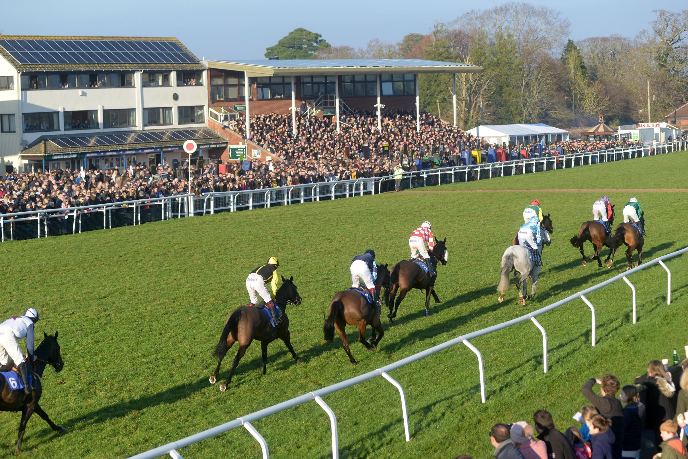 Taunton Racecourse all set for Portman Cup meeting