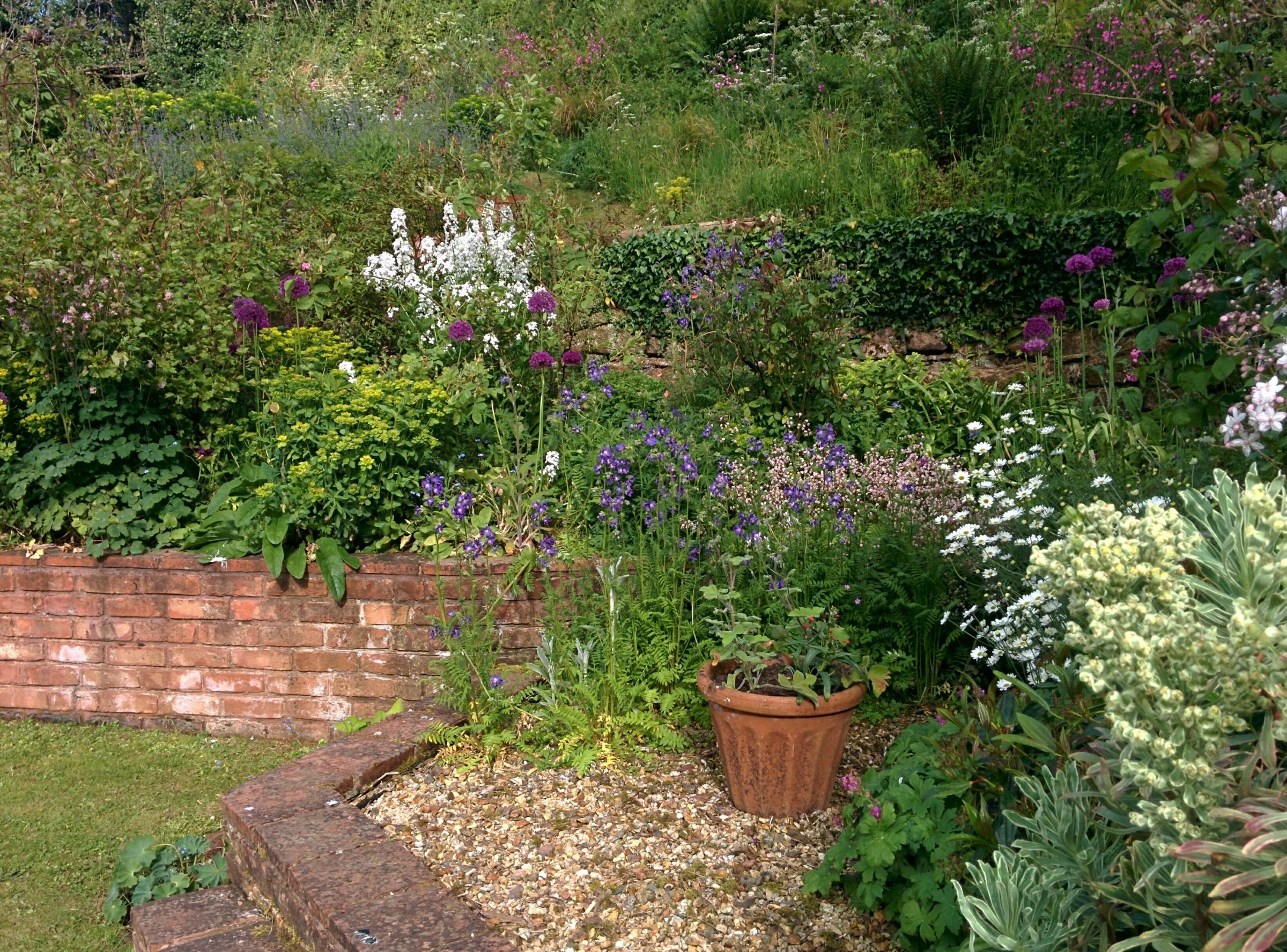 St Margaret's Hospice Open Gardens – Westleigh Farm, Westleigh, Lydeard St Lawrence.