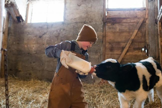 Advice on keeping children safe on the farm
