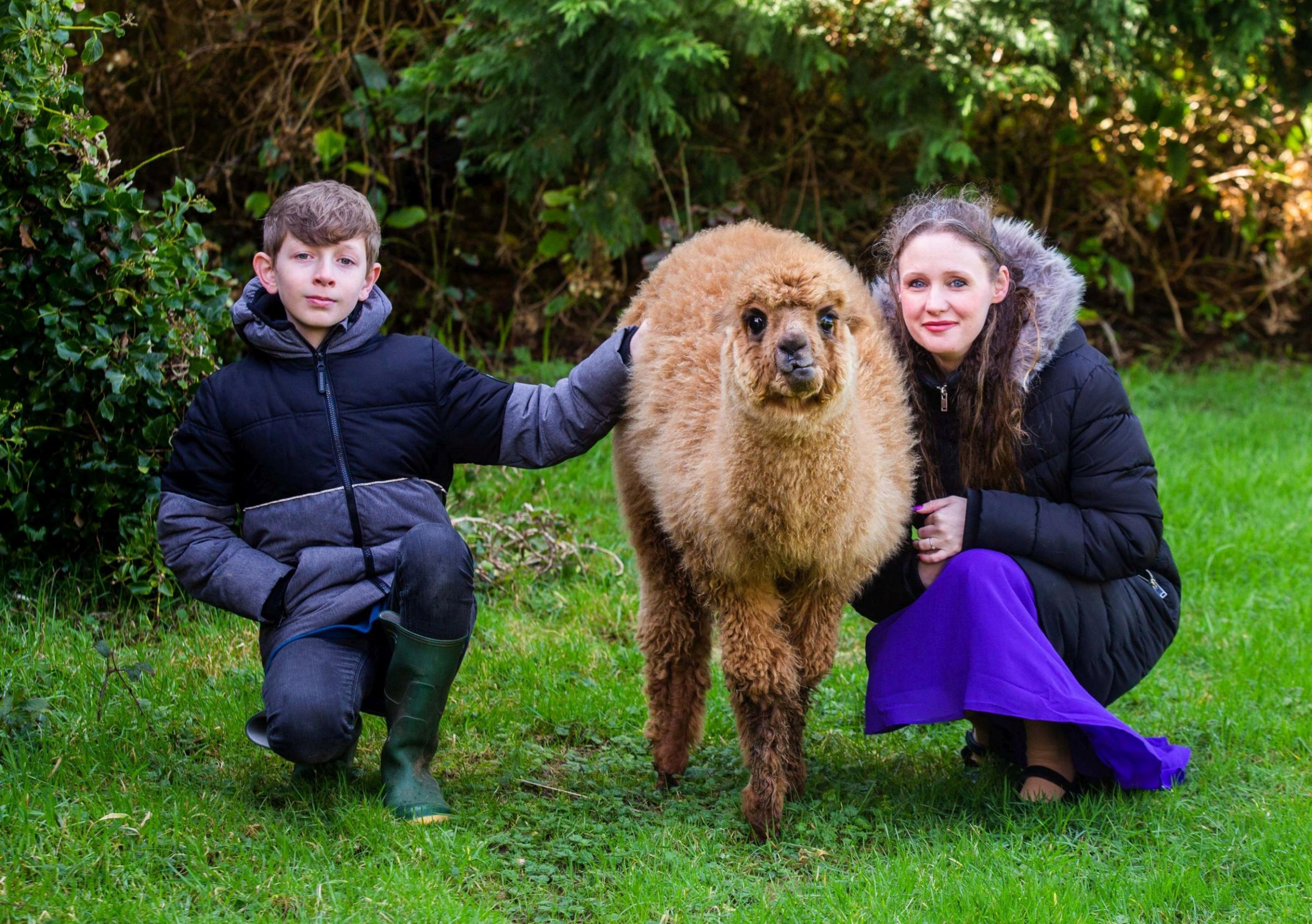 Celestine Ward with her son Casper aged 11, and his pet alpaca called Tea Picture: SWNS