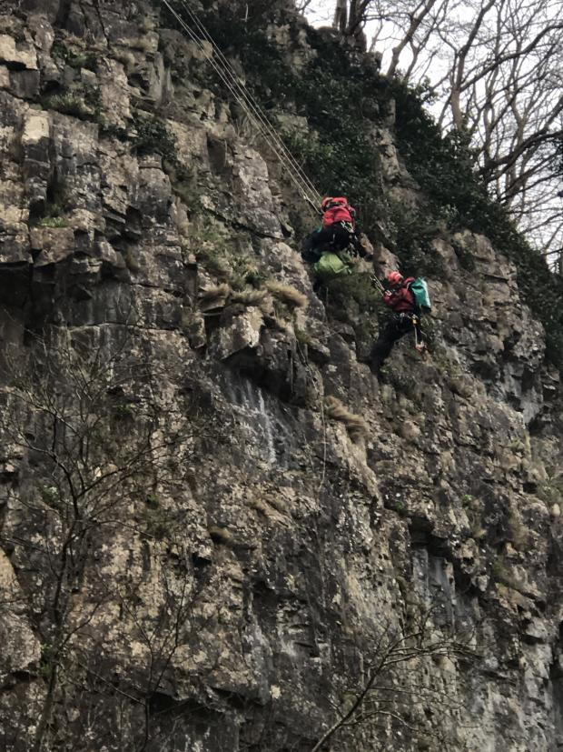 Somerset County Gazette: YOU'VE GOT TO BE KIDDING: Goats rescued after they became stuck on Cheddar Gorge. Pic: RSPCA