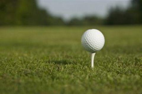 GOLF: Bumper entry at Taunton Vale open