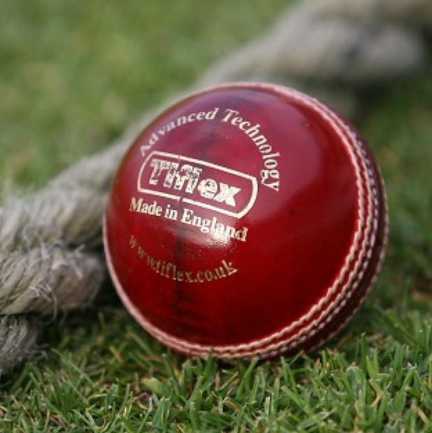 CRICKET: Grant aid for Taunton Deane