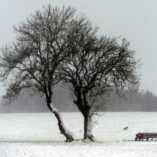 A snow scene in Corbridge, Northumberland, after an Arctic weather front hit the UK