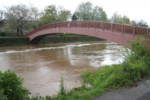 Emergency services rescue after man falls into River Tone in Taunton