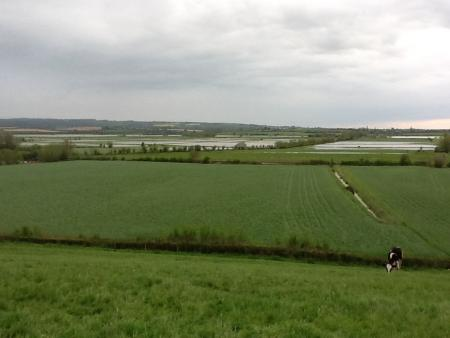 Photos of wet and windy weather in Somerset, spring 2012. The Levels on April 30 2012. Email your pix and stories to newsdesk@countygazette.co.uk or call 01823-365100