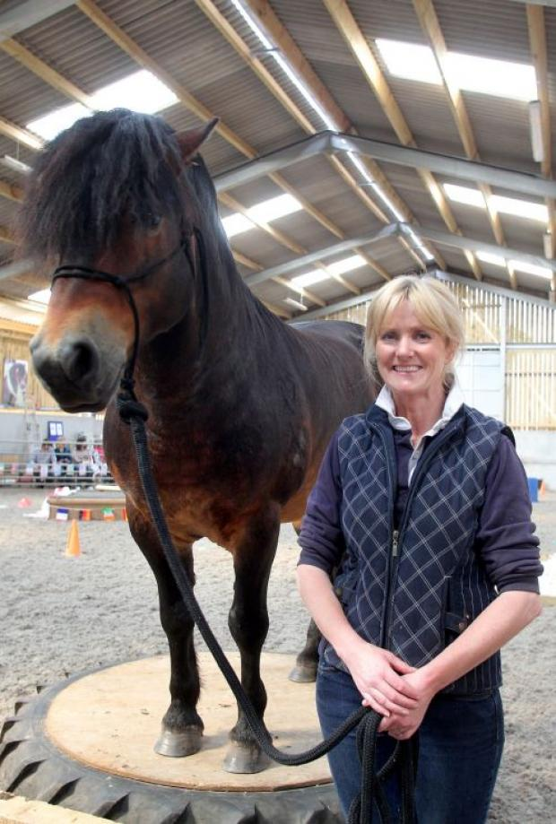 Horse agility world champion Bear with owner Dawn Westcott, who was a hit with visitors at Holt Ball Farm near Minehead. PHOTO: Steve Guscott