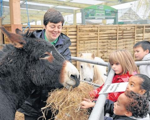 Children meet a donkey at Monkton Elm.