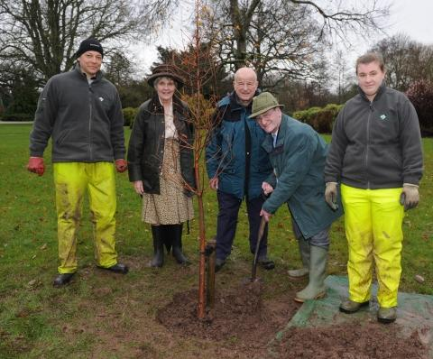 Tree to liven up Vivary Park