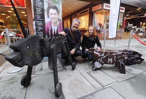Pigs return to Orchard Shopping Centre, Taunton, after make over