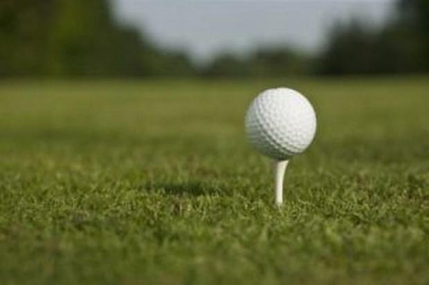 GOLF: Avis drives to victory at Taunton and Pickeridge
