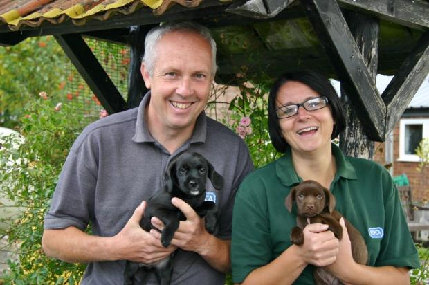 Ian Connell and Louise Hacker with the abandoned puppies.