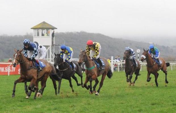 HORSE RACING: Taunton survives inspection