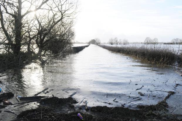 The road to Muchelney from Huish Episcopi is completely swamped.