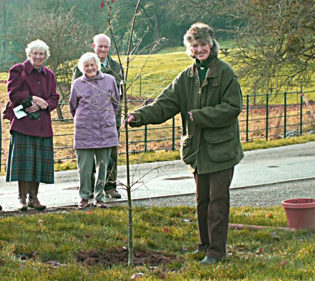 ANNE Luttrell stands next to the newly planted Jubilee oak with supporters of the Dunster WI. PHOTO: National Trust.