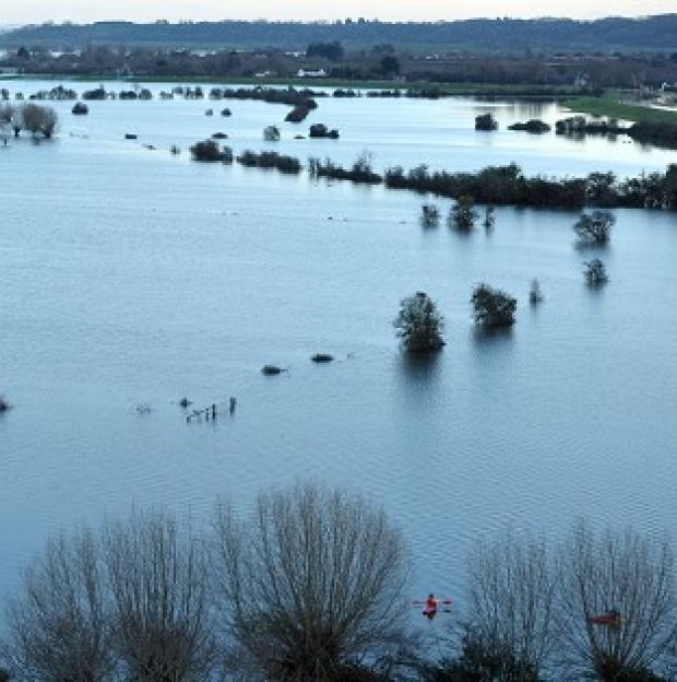 Somerset County Gazette: Flood water on the Somerset Levels