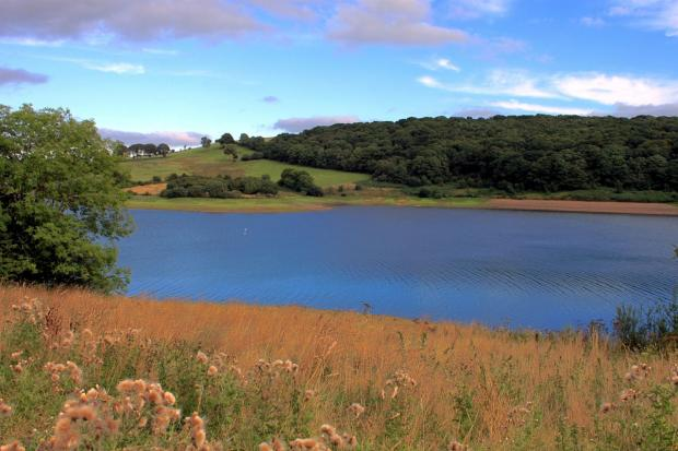 WIMBLEBALL Lake was reawrded the Green Tourism Business Scheme's Gold Award. PHOTO: Daniel Pocock.