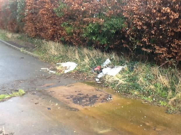 Somerset County Gazette: Waste was also found by the Blackdown Business Park.