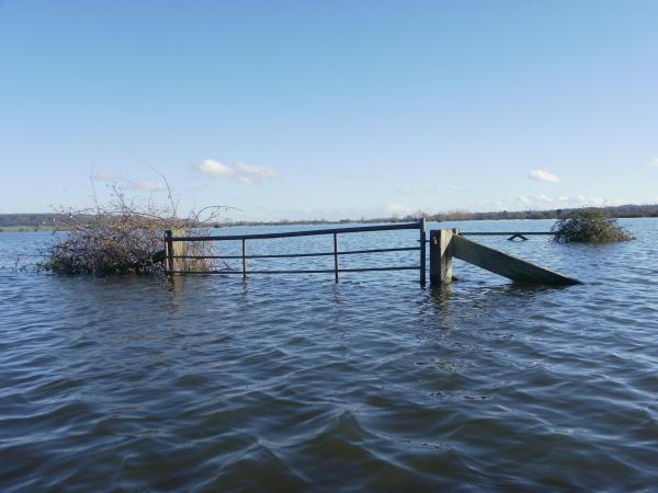 Somerset County Gazette: Somerset County Council to ask Government for £2million to cover flood costs