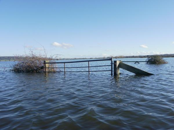 Somerset County Council to ask Government for £2million to cover flood costs
