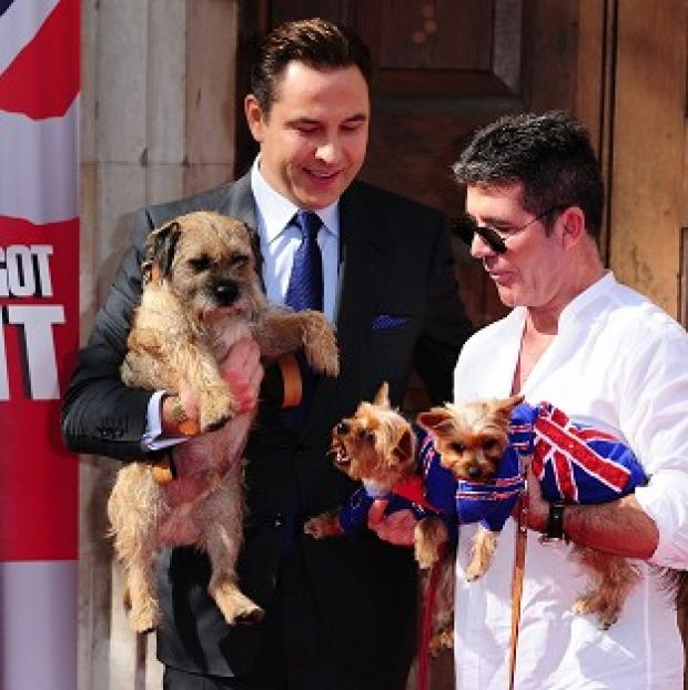 Somerset County Gazette: David Walliams with his dog Bert and Simon Cowell with his dogs Squiddly and Diddly at the launch for Britain's Got Talent