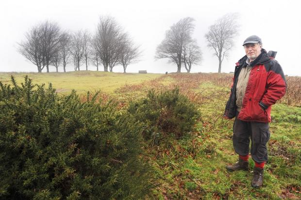The Seven Sisters at Cothelstone Hill, with John Fisher, one of the campaigners to keep the trees.