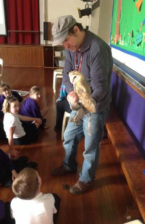 CHRIS Sperring from the Hawk and Owl Trust showing Bellatrix the barn owl to pupils at Minehead First School. PHOTO: Submitted.