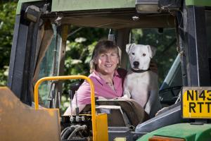 Dogs in tractors warning after farm incident