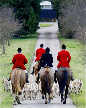 Somerset County Gazette: HUNTING VOTES: Could foxhunting make a return?