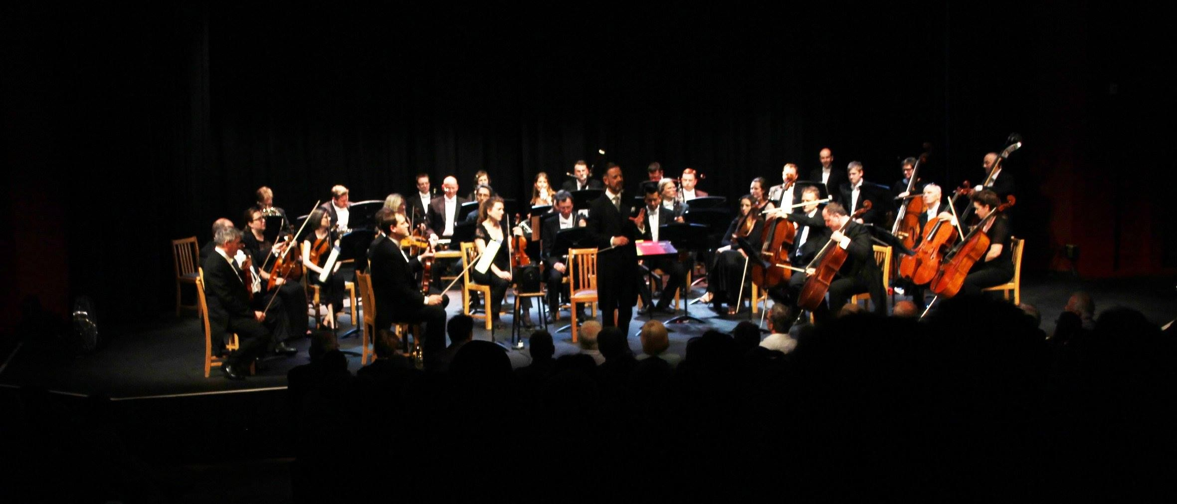 The Southern Sinfonia hits the heights at concert at Queen's College in Taunton