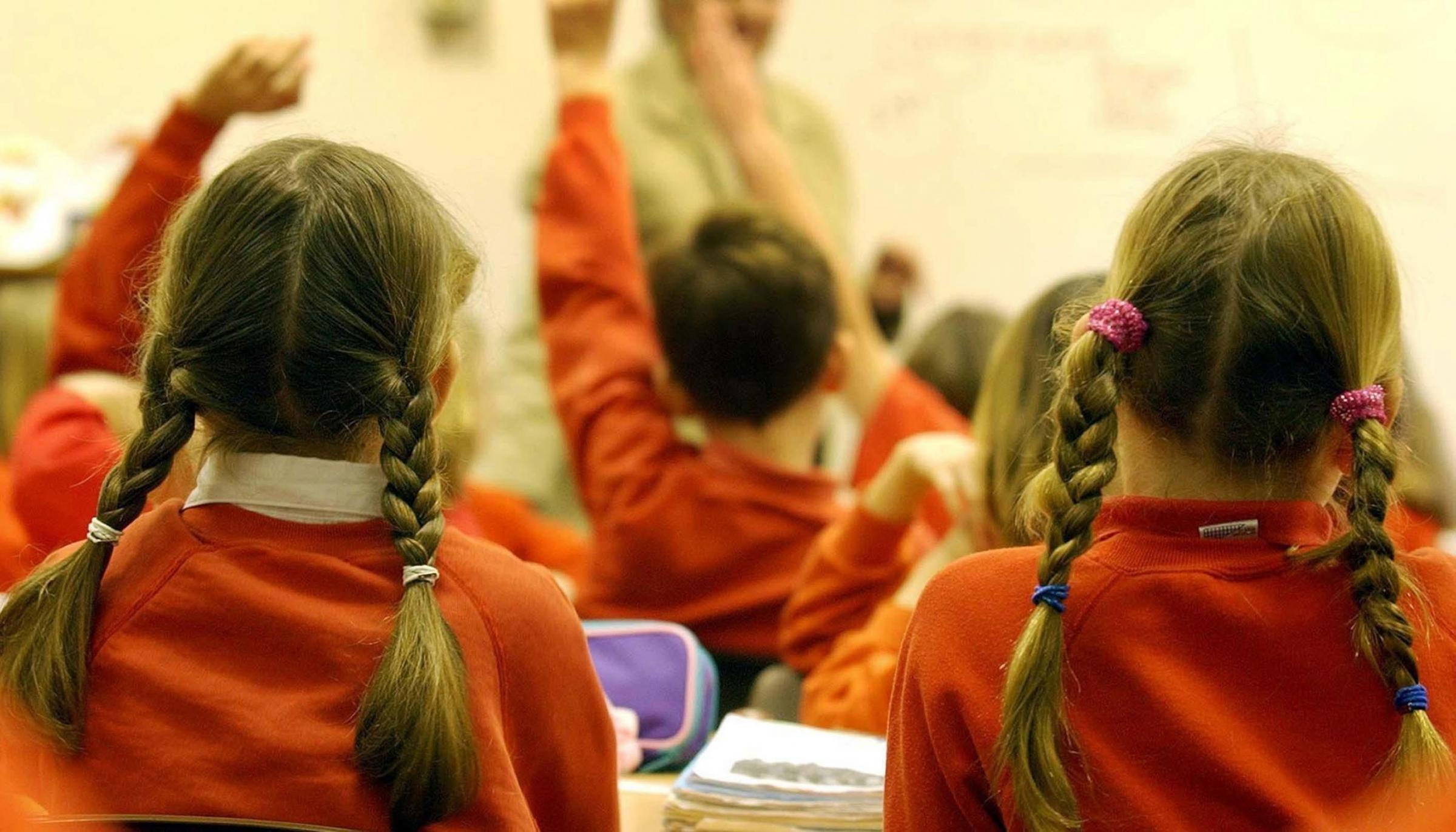 SOLUTIONS: Cllr Peter Murphy says West Somerset needs to 'seriously consider' changing to a two-tier education system