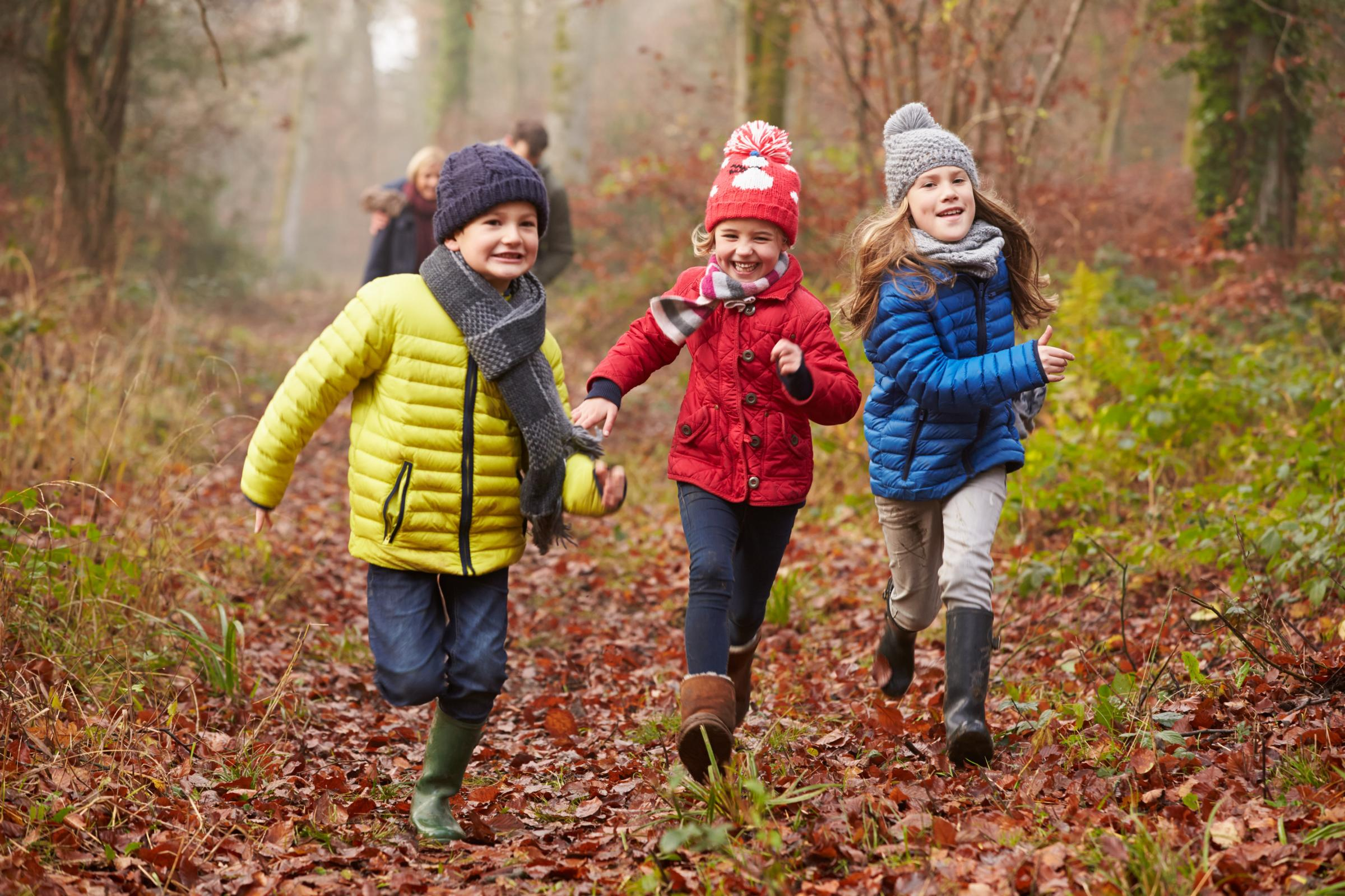 Get Ready Reindeers: Festive Family Trail