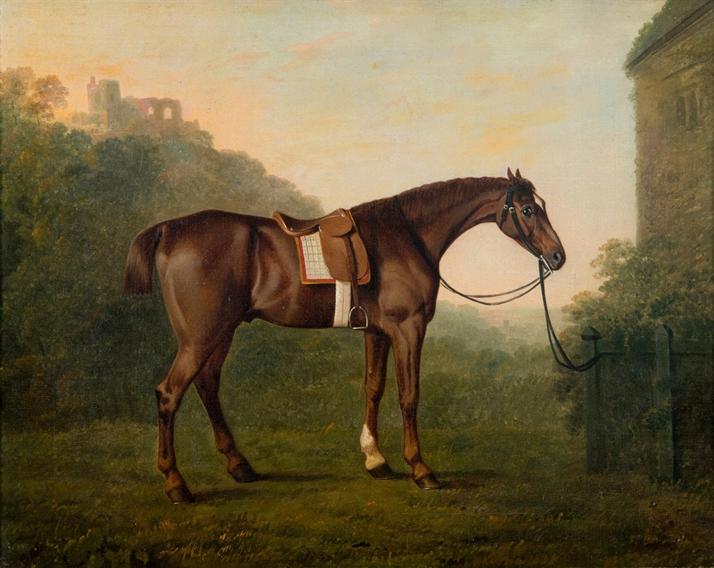 MAGNIFICENT: Portrait of a saddled bay Hunter by John Boultbee was the top lot at Greenslade Taylor Hunt's March sale