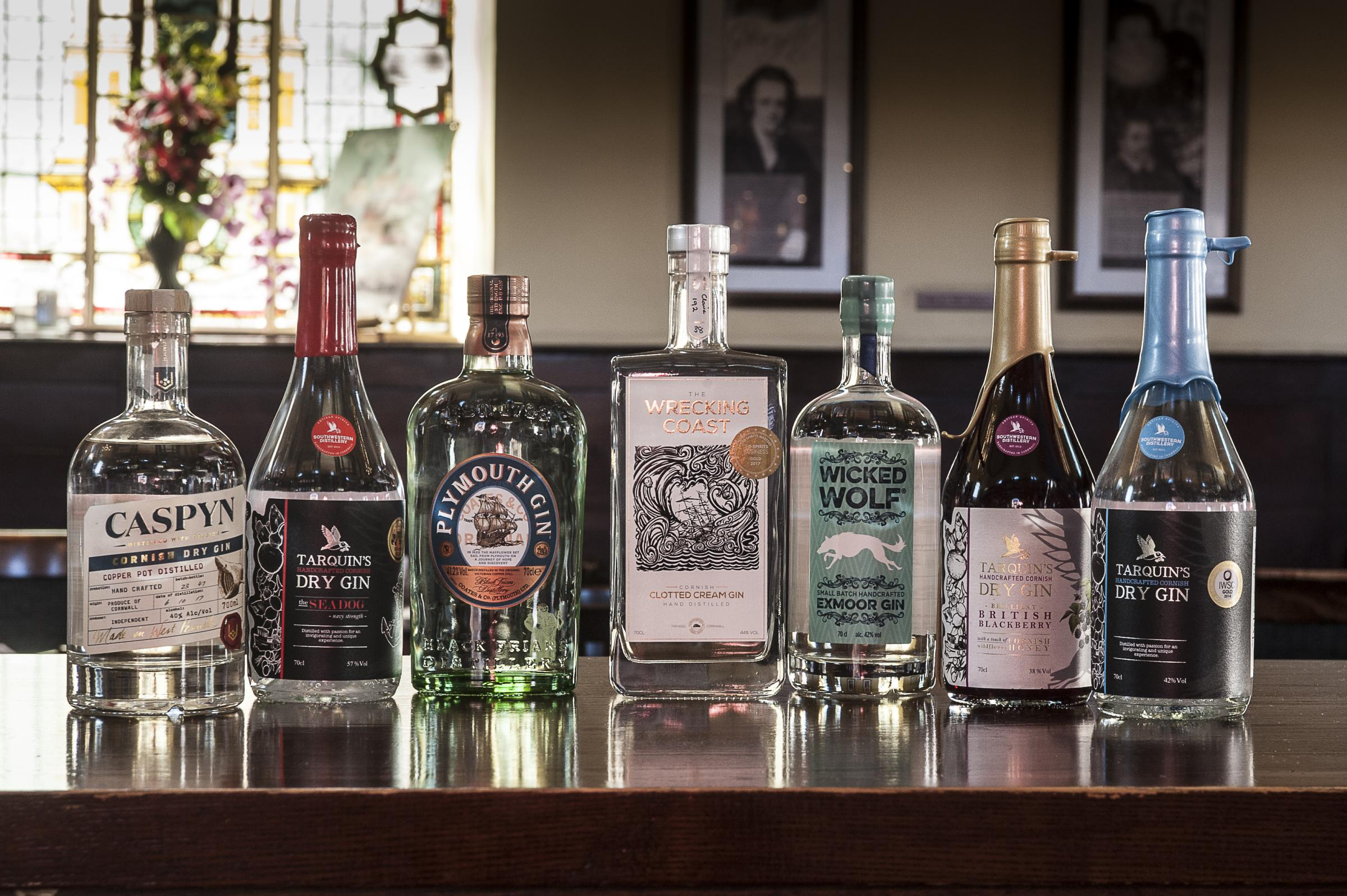 GIN FESTIVAL: Gin-lovers will be able to try 10 different gins from across the region – including one which is made on Exmoor