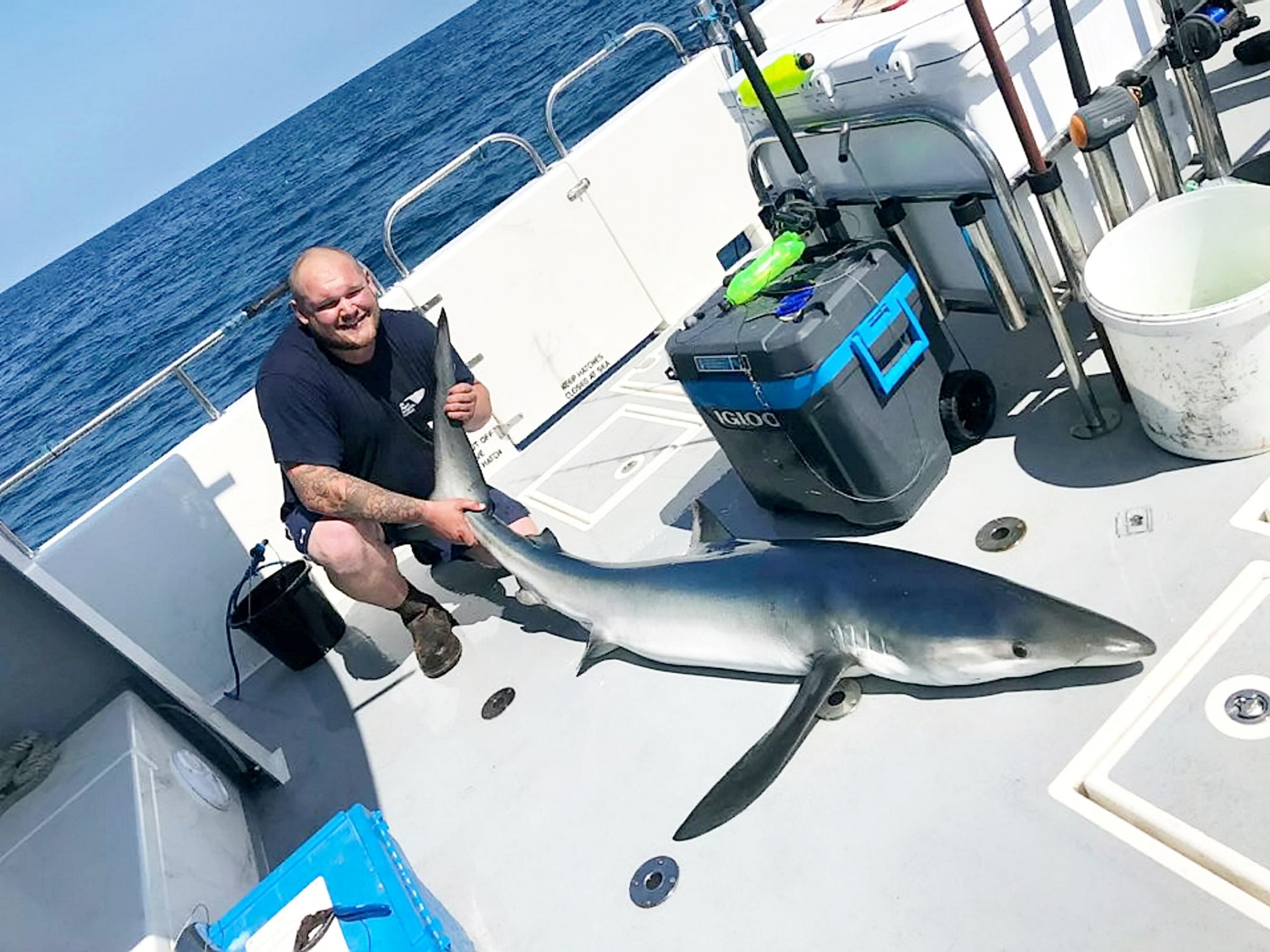 British fishermen for the day caught 20 sharks 3