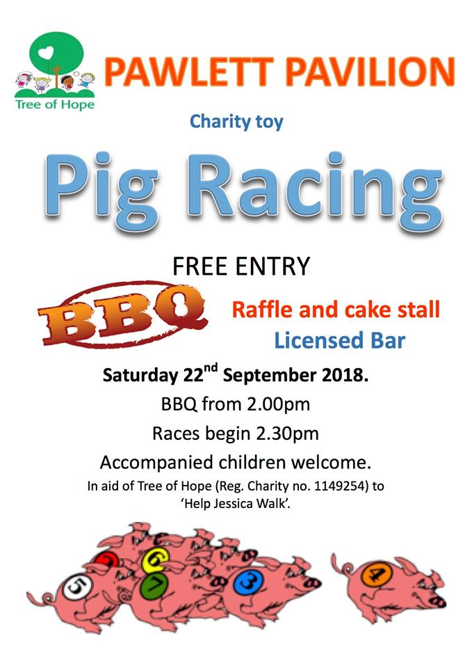 Charity Toy PIG RACE in aid of Help Jessica Walk