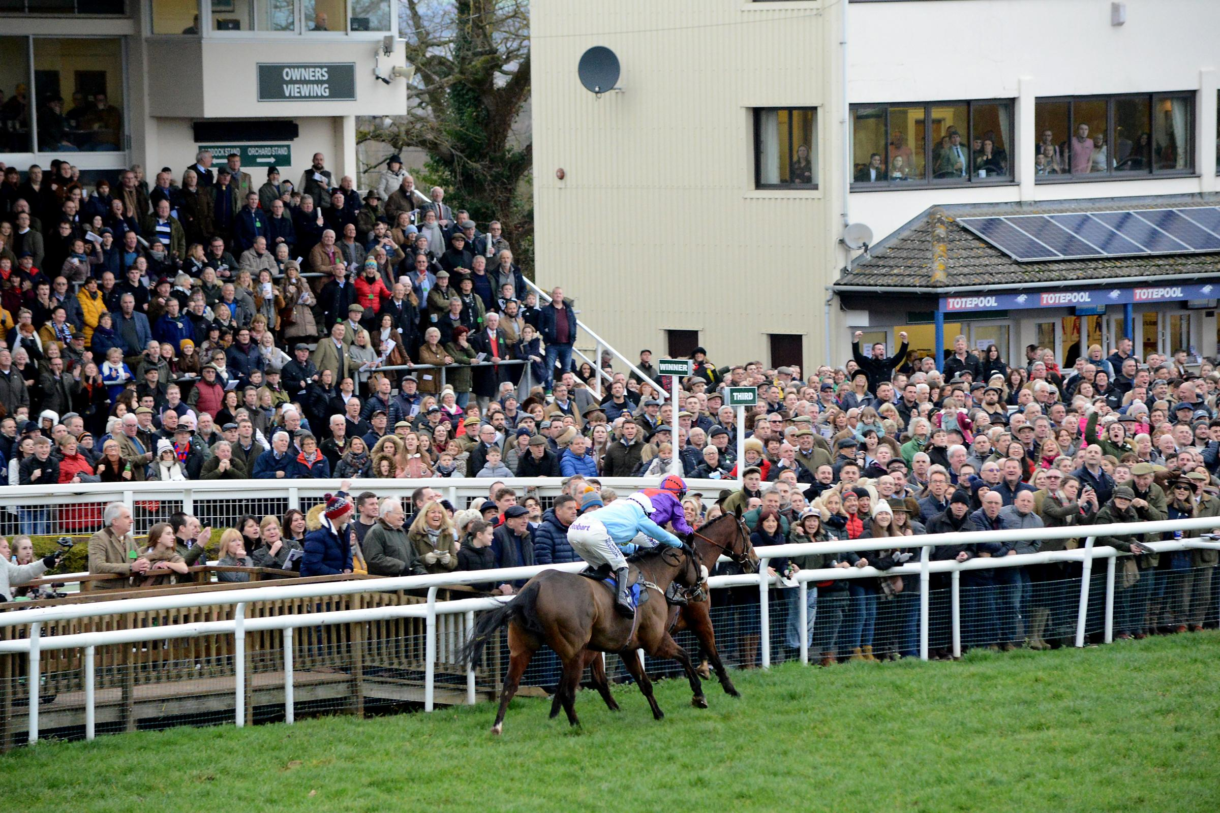 CROWD: Taunton Racecourse is looking for another big turnout following its Christmas Meeting last week. Pic: Aisling Magill