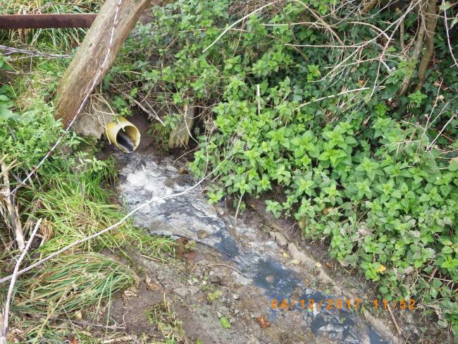 FINED: Polluting water being discharged from Meare Green Farm, Stoke St Gregory